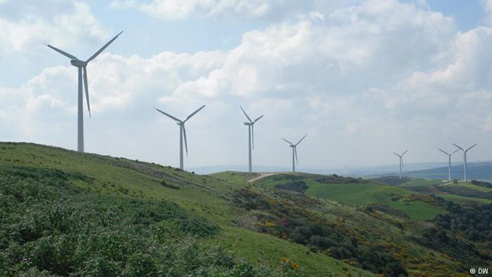 إسناد تراخيص لأربع شركات لإنتاج الكهرباء من طاقة الرياح