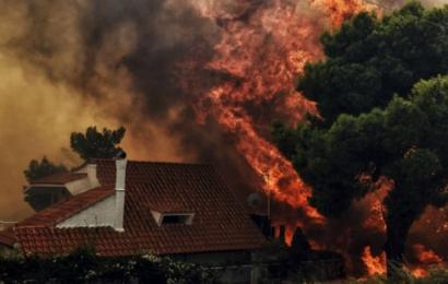الولايات المتحدة: 31 قتيلا و228 مفقودا في حرائق كاليفورنيا