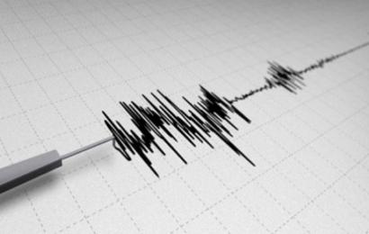 """أندونيسيا: زلزال عنيف يضرب جزيرة سياحية و السلطات تُحذر من """"تسونامي"""""""