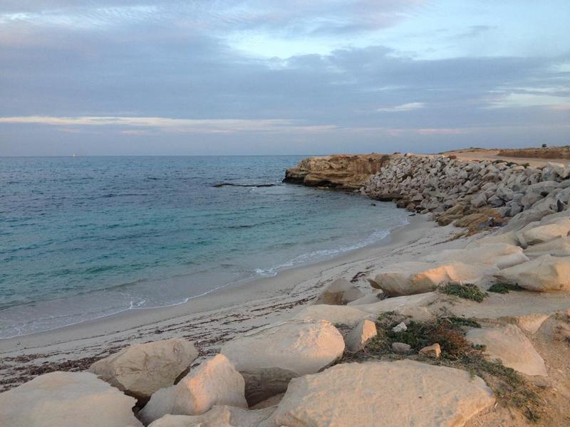سوسة: المدير الجهوي للصحة يقدم توضيحا حول 'وجود بكتيريا في شواطئ سيدي بوعلي وهرقلة