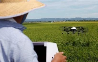 طائرات الدرون بديلاً عن المزارعين في اليابان