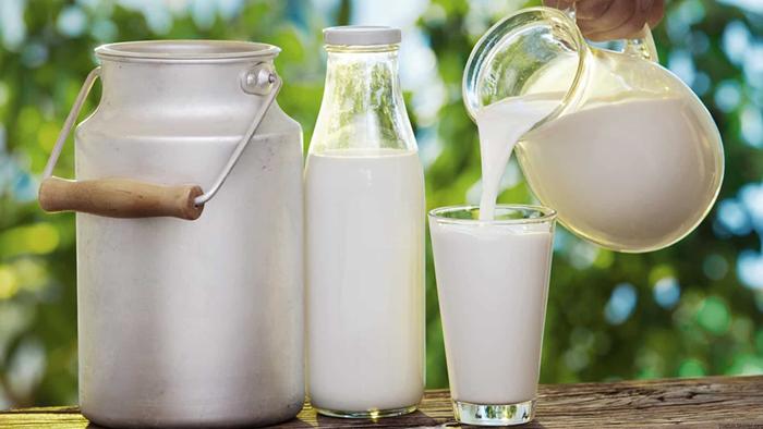 نحو توريد 7 مليون لتر من الحليب