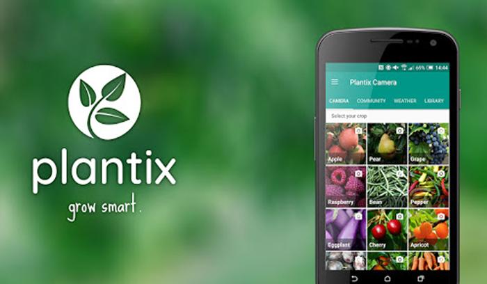 تطبيق اندرويد  للكشف عن أمراض النباتات