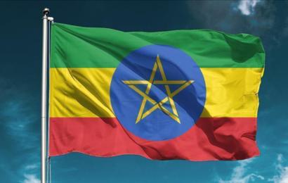 وفد من رجال الأعمال الأثيوبيين سيزور تونس لبحث فرص الاستثمار
