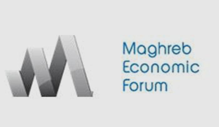 المنتدى الاقتصادي المغاربي (MEF) : دعوة لتقديم الترشحات لبرنامج الزمالات المهنية (PFP)