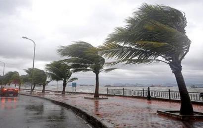 معهد الرصد الجوّي يحذّر من رياح قوية مرفوقة بدواوير رملية