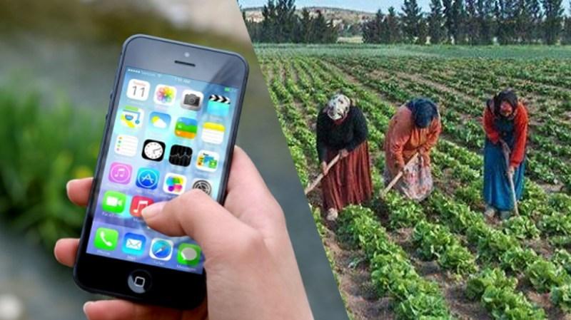 بداية من الغد: انخراط المرأة الريفية بمنظومة التغطية الاجتماعية عبر تطبيقة الهاتف الجوال