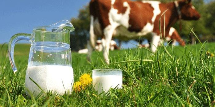 """نحو الترفيع في أسعار """"الباقات"""" والحليب والبيض"""
