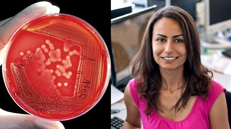 """باحثة تونسية تنجح في تطوير طريقة لاكتشاف مرض """"سرطان الدم"""" في مرحلة مبكرة"""
